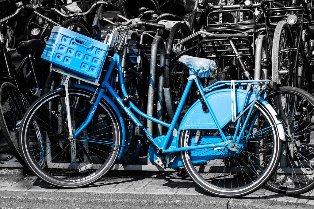 The Blue Bike