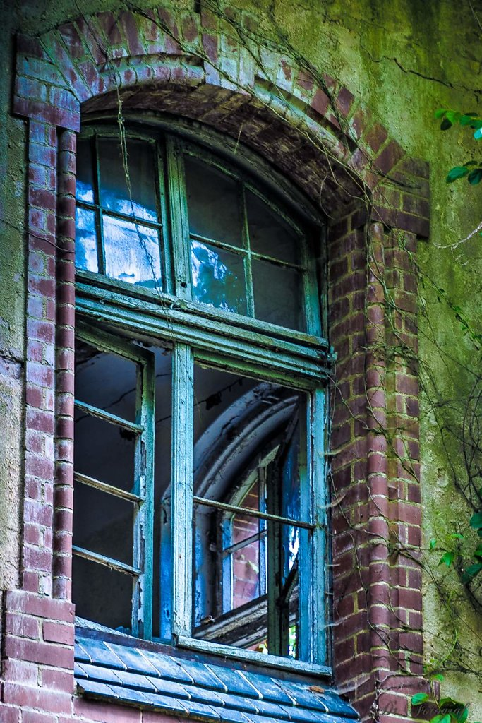 Ol´ Blue Window